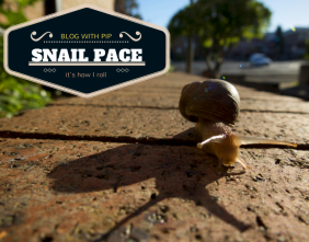 Rachael Willis The Bowerbird Girl Snail pace how i roll