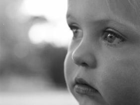 #s_daysingle old skool edition film SLR Rachael Willis - the bowerbird girl